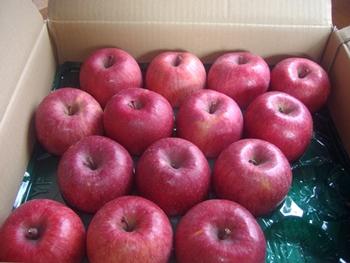 リンゴ2015-1