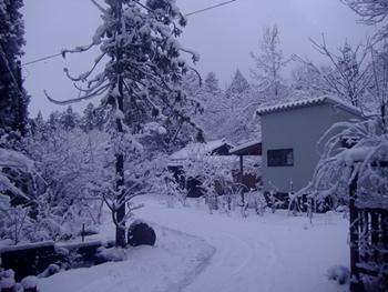 雪2016-1