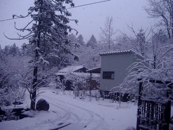 雪2016