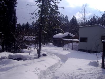 冬景色2016.2