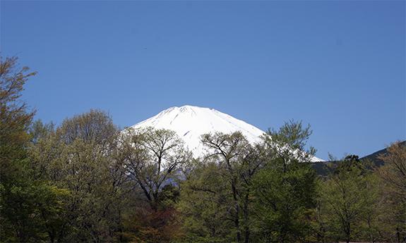 御殿場から写した富士山