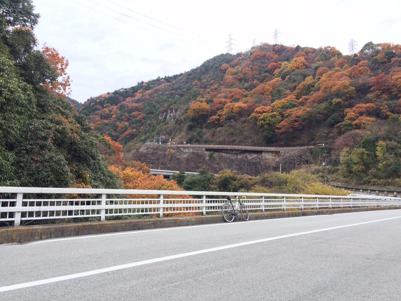 151210六甲山01.JPG
