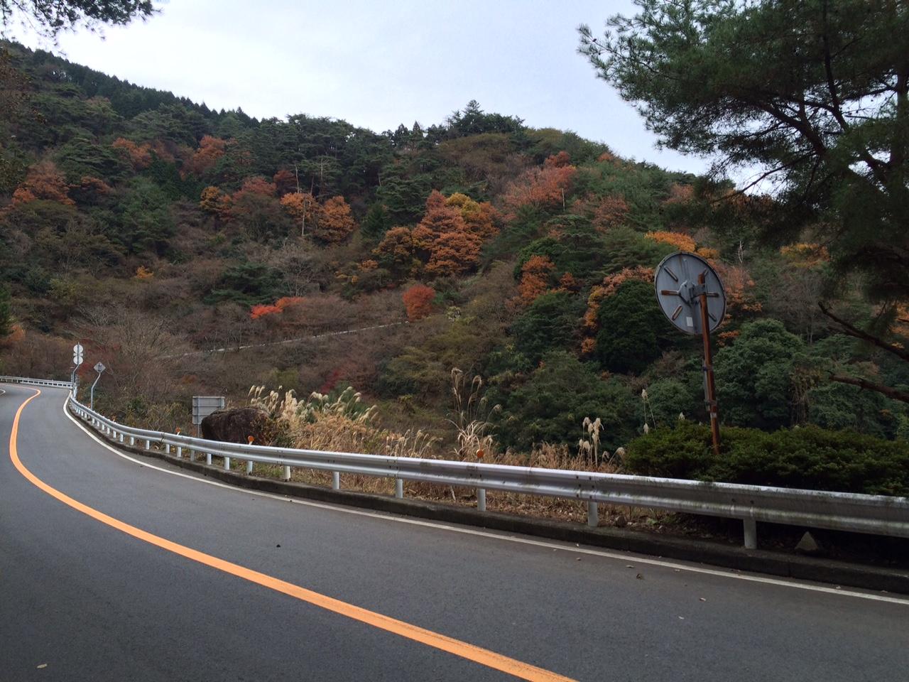 151210六甲山05.JPG