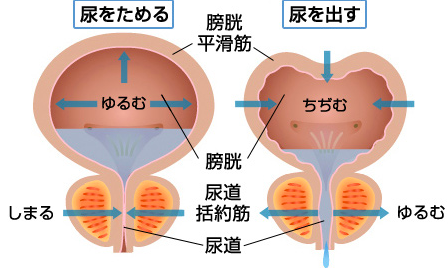 20150804133429.png