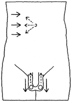 fukuheki hansha