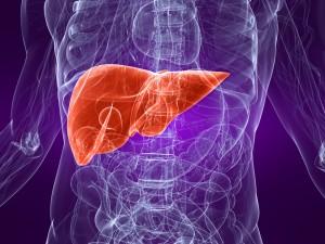 Alpha-1-Liver-Disease1.jpg