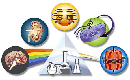 Pharmacologyprism.jpg