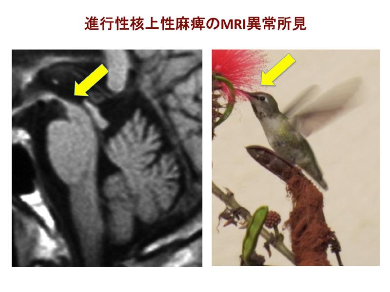 image21_5.jpg