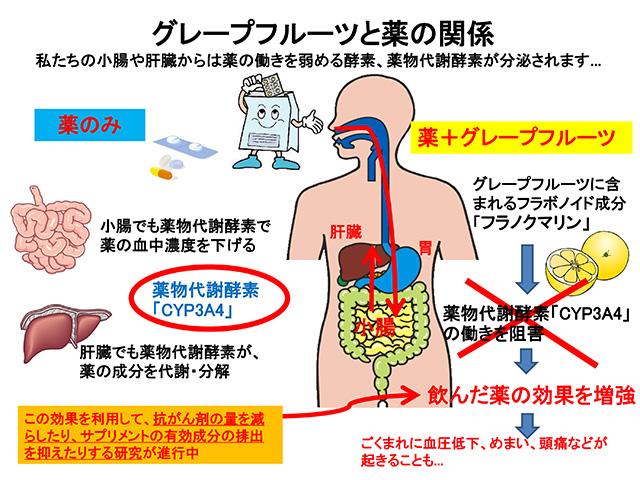 news_kagaku005-6.jpg