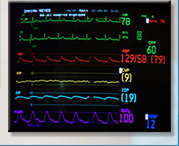 vital_signs_bot_image_blk.jpg