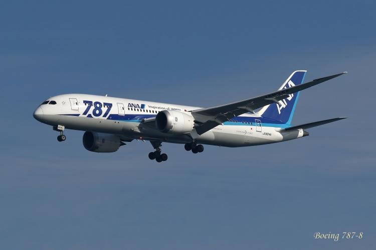 A-1072.jpg