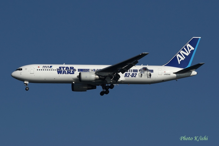 A-1146.jpg