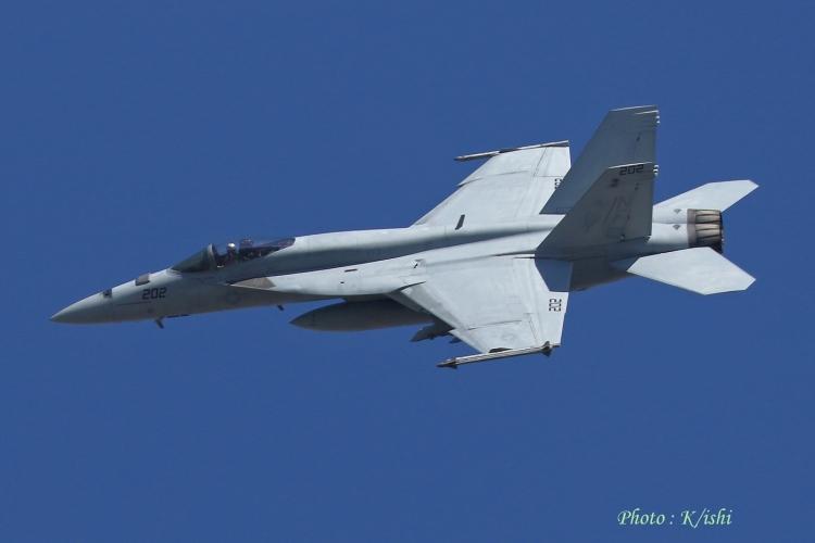 A-1174.jpg