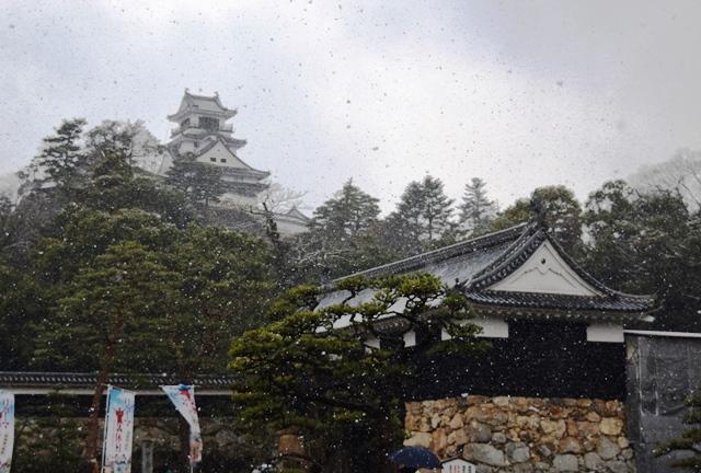 雪の高知城web