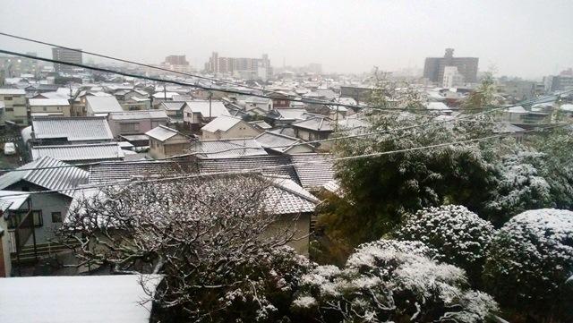 雪の高知市