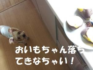 20151213_150542.jpg