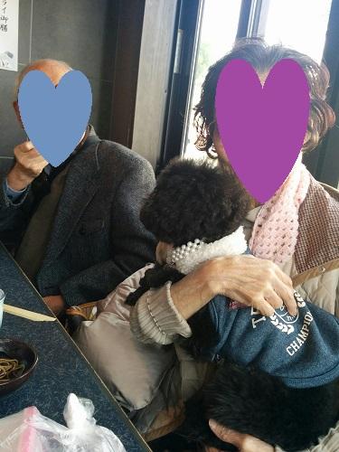 IMG_20151225_122211.jpg
