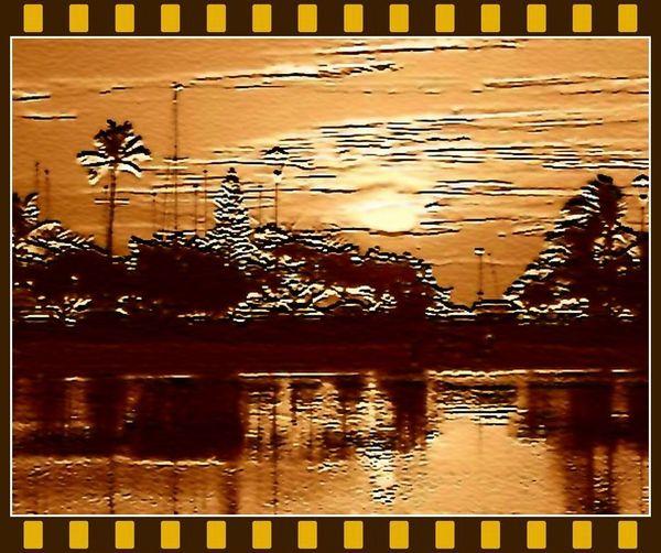 hawaii2_modifyフィルム_リサイズ