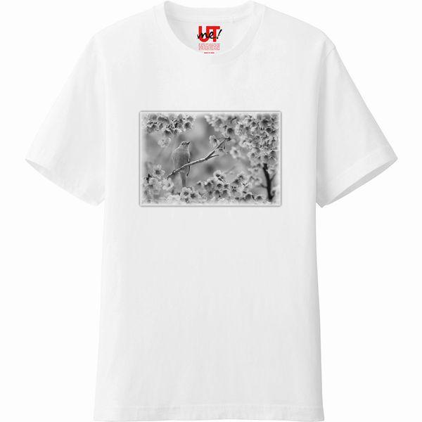 bird影_完成_Tシャツ