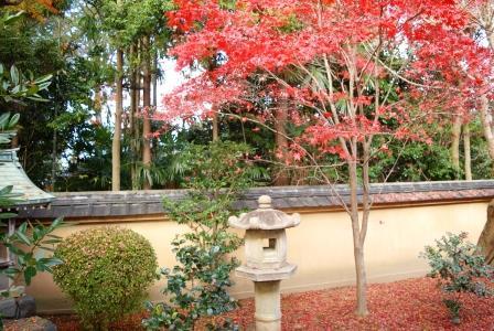 2015 冬の京都 4