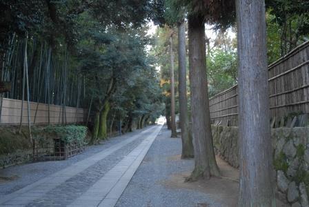 2015 冬の京都 11