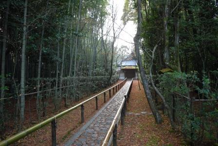 2015 冬の京都 14