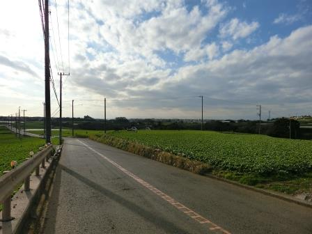2015走り納め 3