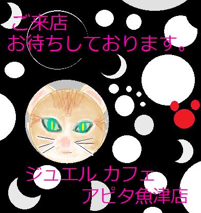 ブログ用57