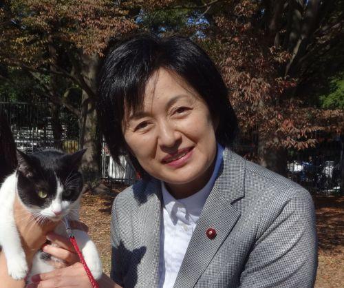 500 渋谷区議会議員 笹本由紀子先生