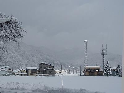 P1120134.jpg