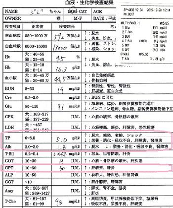 血液検査6-20151220