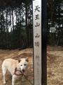 20160104天王山