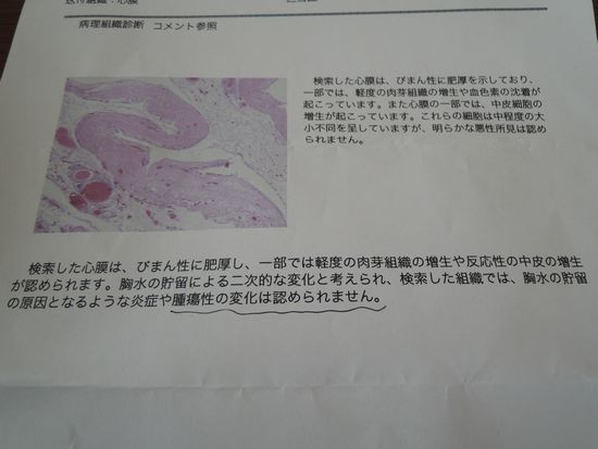 DSCN3042b.jpg
