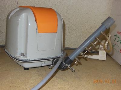 DSCN9004.jpg