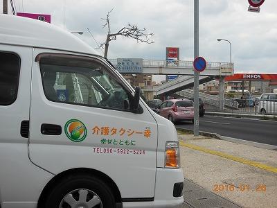 DSCN9321.jpg