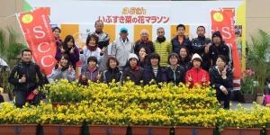 160110菜の花