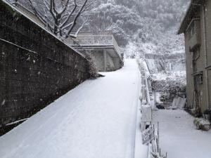 160124大雪01_050