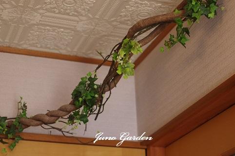 藤の枯れ枝16-1-2