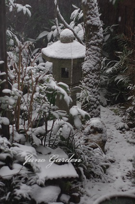 中庭雪160120