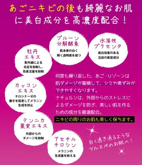 nikibi11.jpg