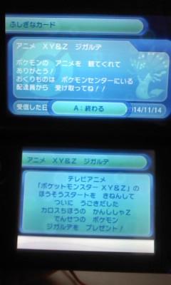 L03B0291_201512252023213a1.jpg