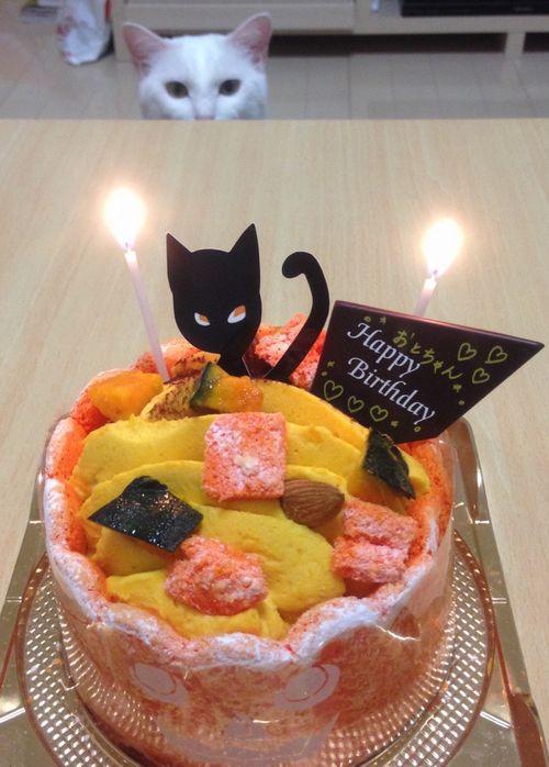 音2ケーキ!