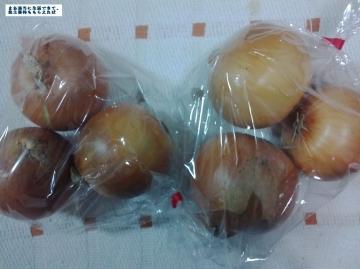 スクロール 野菜詰め合わせ02 201509