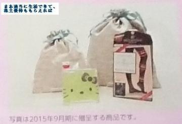 SHO-BI 優待04(優待案内) 201509