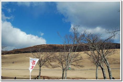 13127若草山