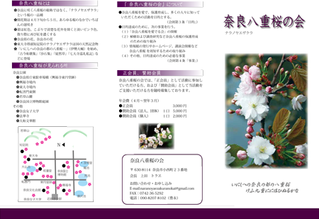 奈良八重桜の会リーフレットweb-1