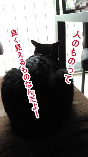 P_20160214_093619.jpg