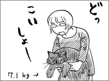 kfc00461-5