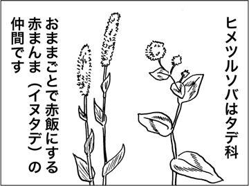kfc00482-2