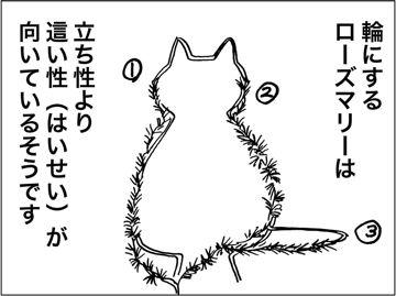 kfc00488-6
